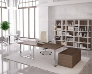 Furniture for managers